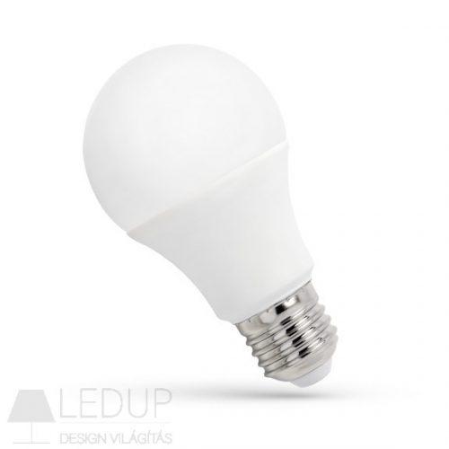 LED GLS E27 24V 10W CW  SPECTRUMLED